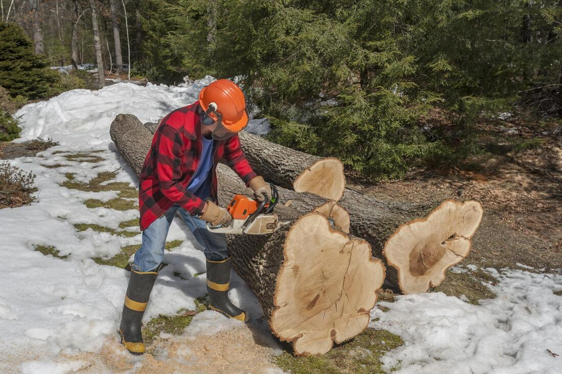 a man cutting the log